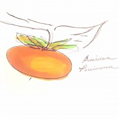 yellow orange persimmon fruit