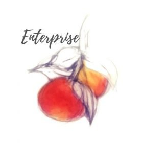 Enterprise Apple Tree