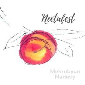 Nectafest Nectarine Tree