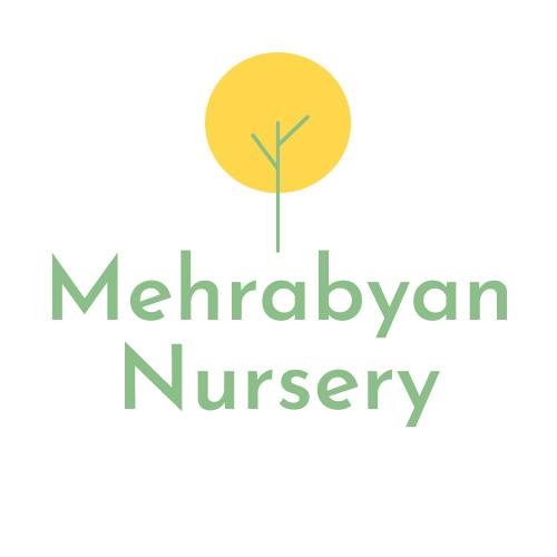 Mehrabyan Nursery