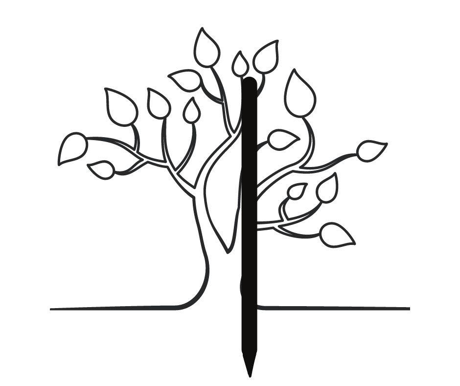 stake tree