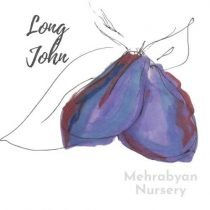 Long John Plum Tree
