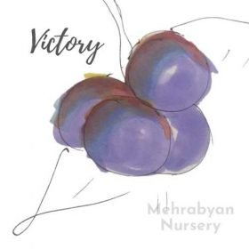 Victory Plum Tree