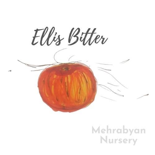 Ellis Bitter Apple Tree