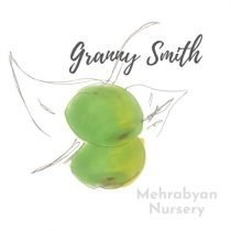 granny smith apple tree