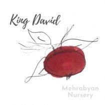 King David Apple Tree