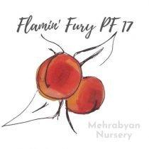 Flamin' Fury PF 17