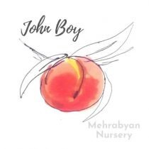 John Boy Peach Tree