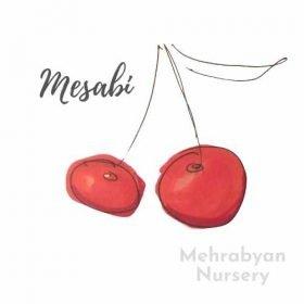 Mesabi Cherry Tree