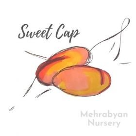 sweet cap peach tree