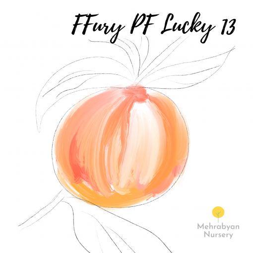FFury PF Lucky 13 Peach Tree